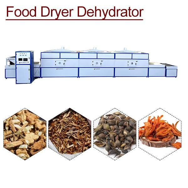 AutomaticStainless SteelMeat Dehydrator With Small Size #1 image