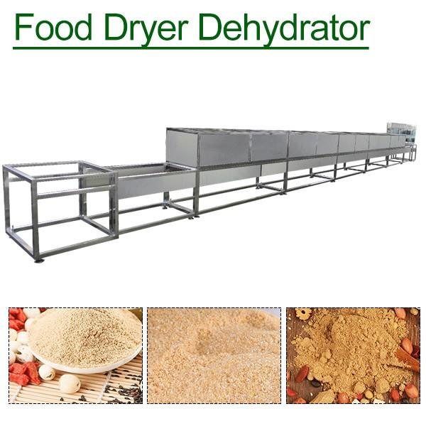 Functional High Efficiency Fruit Dehydrator With Adjustable Temperature #1 image