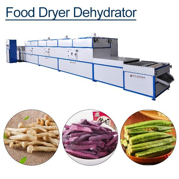 New Design Factory Pricefood Dryer With Hot Air Circulation System #1 image