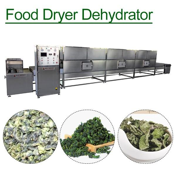 New Condition High Quality Dehydrator Machine With Mushroom As Main Materials #1 image