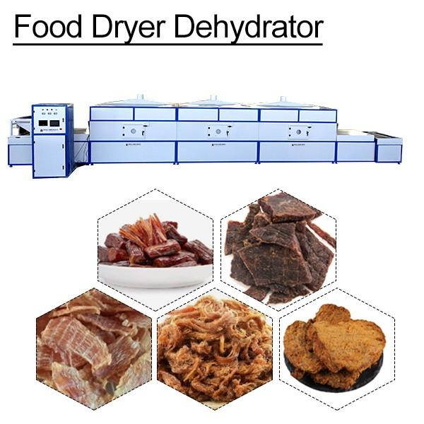 CECompliant Competitive Price Vegetable Dehydrator,Commercial Food Dehydrator #1 image